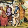 Hãy Tin Theo Đức Kitô